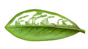 چاپ و محیط زیست